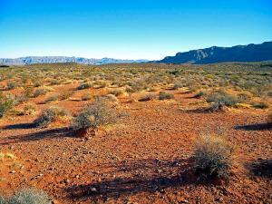 nevada-desert-frank-wilson